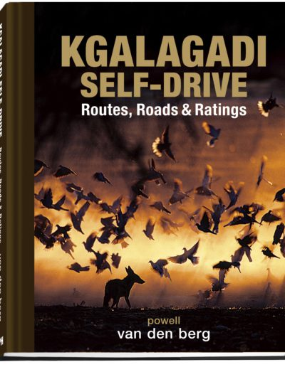 Kgalagadi Self-Drive COVER BOOK 3D