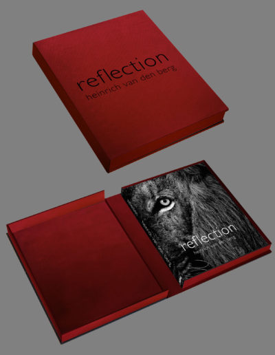 Reflection Collectors Edition combined