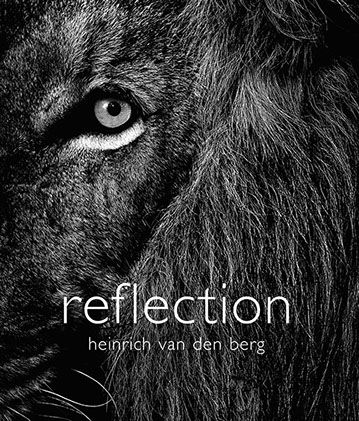 reflection cover hres360x422