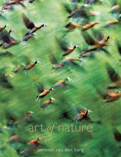 Art of Nature Cover 2nd Edition