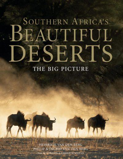 Beautiful Desert Cover