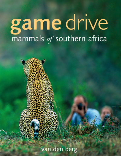 Game-Drive-Big-cover-mres