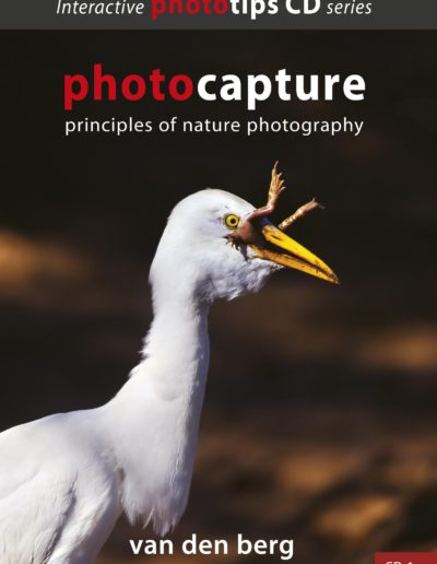Photocapture cover
