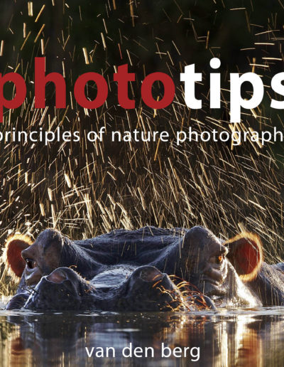 Phototips Cover