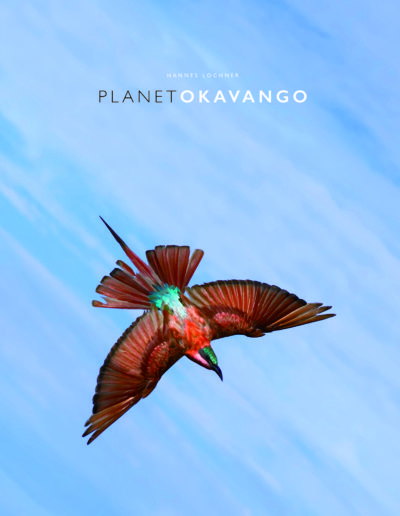 Planet Okavango cover hres