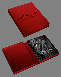 Reflection-Collectors-Edition-combined200px