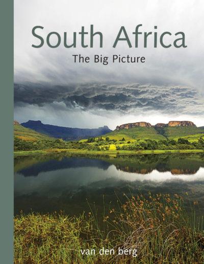 SA Big Book v3 cover