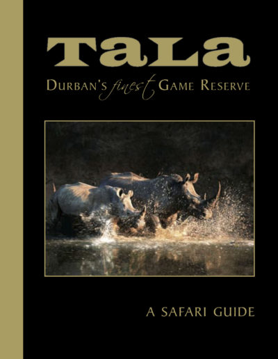 Tala-Game-drive-tala-08_11-1