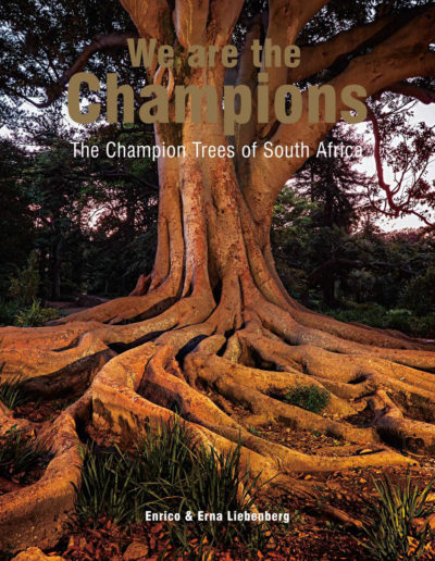 WeAreTheChampions_Cover_