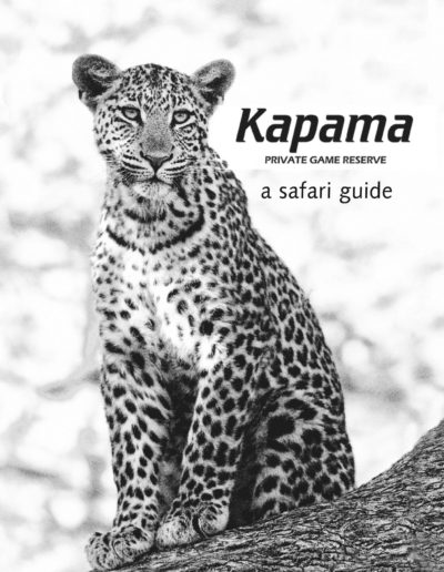 kapama small book